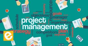 Projects management Training